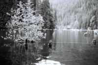 red-lake-5